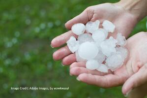 hail stones in hand after hail storm