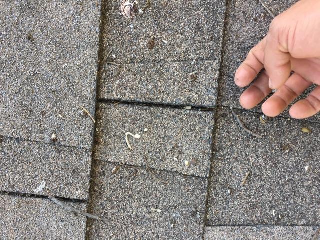RoofRepair-May31.jpg