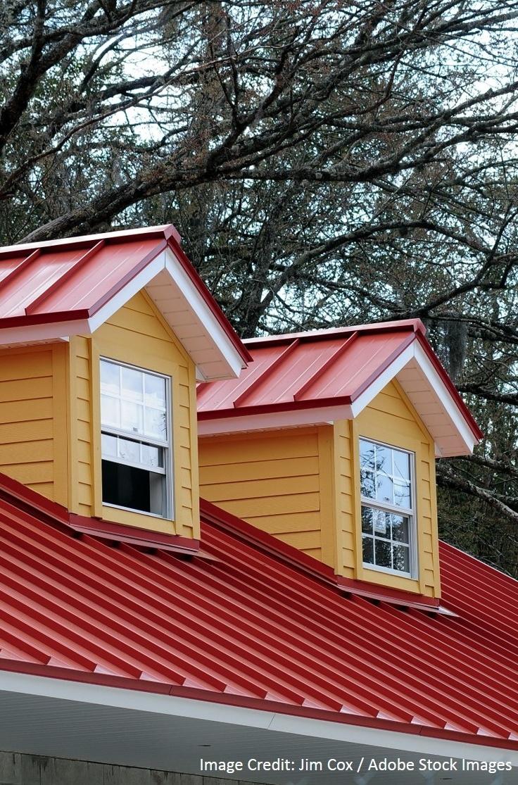 Eco Friendly Metal Roof-489348-edited.jpg