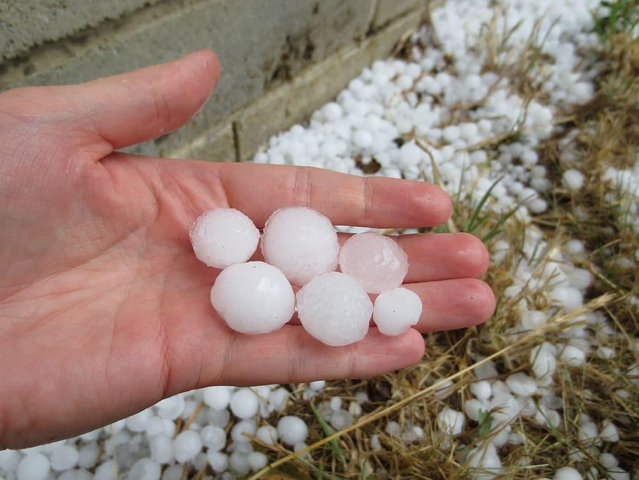 hail, hailstones, weather, ice, storm, cold, summer, meteorology, precipitation, hailing