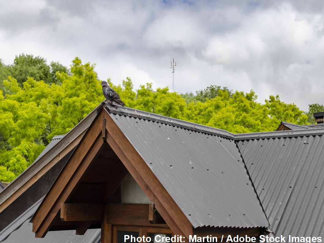 Call A Metal Roofer Before You Try New Diy Metal Roof Systems